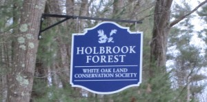 Holbrook Sign