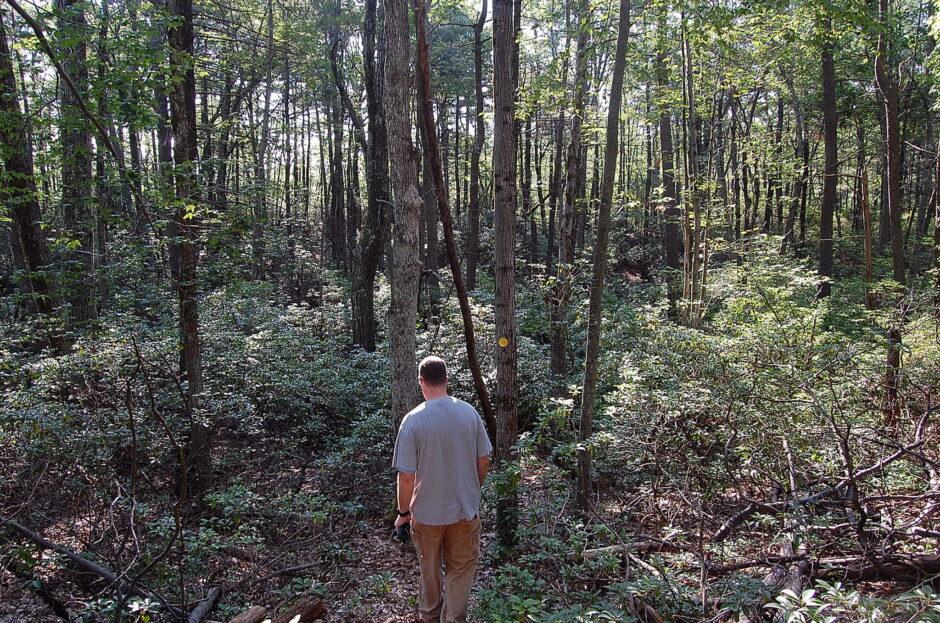 White Oak's Hike Holden Challenge